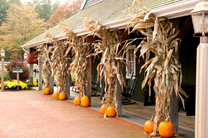 Fall Decorations With Cornstalks And Pumpkins Snow Sons Landscaping